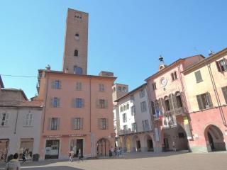 loft in medieval tower - Alba vacation rentals