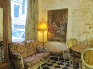 Ben Franklin's Salon in the center of Paris - 6th Arrondissement Luxembourg vacation rentals