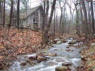Chalet in the Forest with Jacuzzi, Massanutten