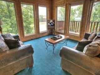 Big Bear Lodge - Image 1 - Sevierville - rentals