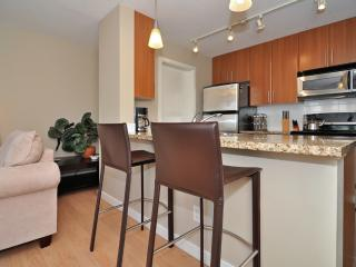Downtown Vancouver Modern 1 Bedroom Condo Walk to Attractions and Amenities