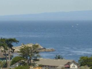 amazing Ocean View, aug 1 - 4 $150 off for $1110., Pacific Grove