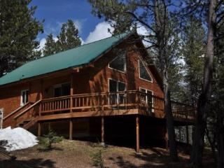 Trailshead Cabin - close to snowmobiling!, Lead