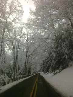 Truly a Winter Wonderland Too