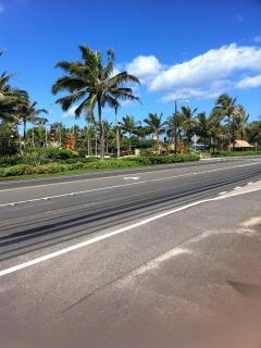 The highway out front Kamehameha Highway, don't drive by us...