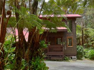 SUMMER SPECIAL  Visit Hawaii Volcanoes Natl Park - Puna District vacation rentals