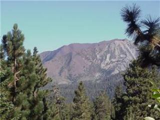 Ideal Condo in Mammoth Lakes (Bigwood # 99) - Image 1 - Mammoth Lakes - rentals