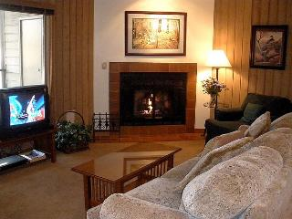 Charming ground floor condo, sit by the fireplace and watch the wildlife! - Bend vacation rentals