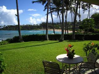 Enjoy Breaching Humpback Whale Shows From Your Napili Shores Lanai