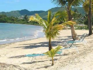 Vacation Condo on the Beach Plus Spectacular Pool, Christiansted
