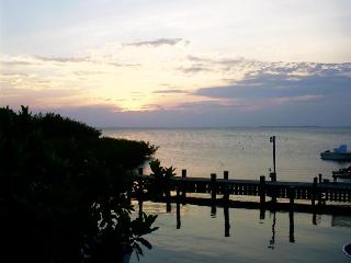 Islamorada Tropical Escape! Clean, Affordable & Li