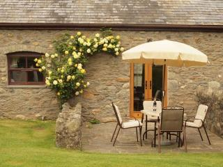 Plas Yw Cottage in Conwy Valley