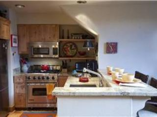 Cimarron Lodge 8 - Telluride vacation rentals