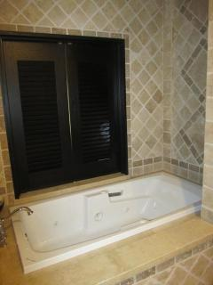 Master Bathroom with sunken jetted tub