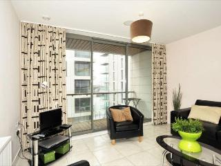 Titanic Quarter Apt, Belfast City Centre - Belfast vacation rentals