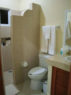 Private Bathroom - all bathrooms feature what's seen here as well as toiletries and hair dryers.