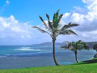 Sealodge D1: Oceanfront, private 2br/2ba, more like a cottage than a condo!, Princeville
