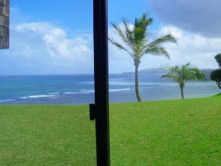 Sealodge D1: Oceanfront, private, more like a cottage than a condo!, Princeville