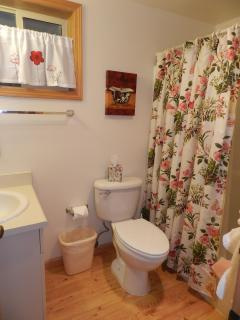 Full bathroom at end of the hall
