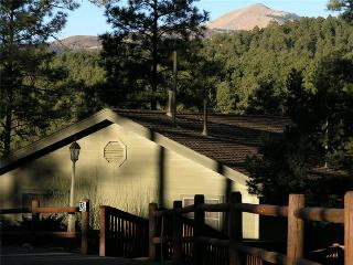 Alpine Village Tree House - Ruidoso vacation rentals