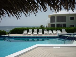 'A Mid-Winter Night's Dream' - Direct Oceanfront!!, Grand Cayman
