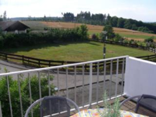 Vacation Apartment in Pfalzfeld - 861 sqft, three balconies, recently renovated (# 1614)