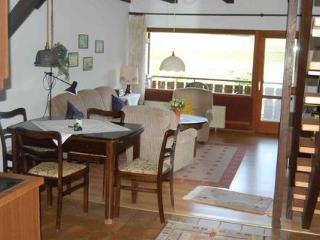 Vacation Apartment in Bodenfelde - nice lawn, right on the river, free WIFI (# 1382), Wahlsburg