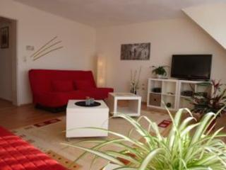 LLAG Luxury Vacation Apartment in Koblenz-Wallersheim - 990 sqft, spacious room, well-furnished (# 1772), Coblenza