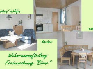 Vacation Apartment in Fuchsmühl - 619 sqft, nice location, affordable, surrounded by nature (# 59), Fuchsmuhl
