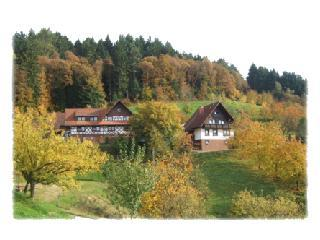 Vacation Apartment in Seebach (Baden) - 538 sqft, relaxing, comfortable, spacious (# 1778) - Seebach vacation rentals