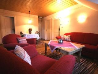 Cottage in Neunburg vorm Wald - rustic furnishings, renovated antique house, patio and balcony (# 1017) - Neunburg vorm Wald vacation rentals