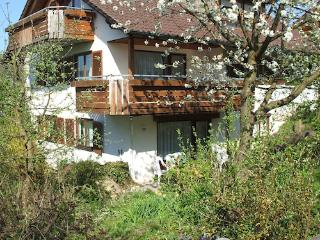 Vacation Apartment in Meersburg - 1076 sqft, friendly, nice, comfortable (# 1723), Meersburg (Bodensee)