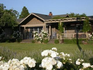 4BR/4BA hm w/solar htd pool surrounded by vineyard, Healdsburg
