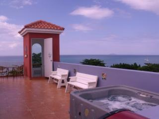 Sky View Penthouse, Private terrace  BBQ & Jacuzzi, Rincon