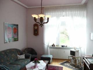 LLAG Luxury Vacation Apartment in Baden Baden - nice, clean (# 255) - Baden-Baden vacation rentals