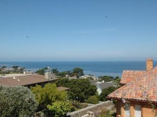 **Free Aquarium Tickets! Stunning Ocean Views! Pet - Pacific Grove vacation rentals