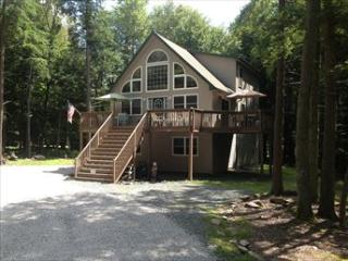CF017 94064 - Pennsylvania vacation rentals