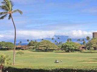 Kaanapali Beach 2BR/1BA Ocean View -Great Location, Lahaina