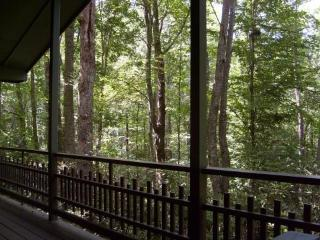 Mountain Cottage with Cascading Waterfall, hot tub - Brevard vacation rentals