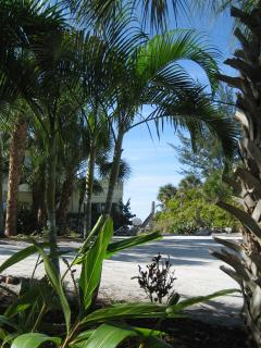 Tucked in among the native flora and fauna - Pearl Beach Inn!