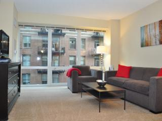 MODERN LOOP APARTMENTS FURNISHED FULL KITCHEN IN-UNIT WASHER/DRYER - Illinois vacation rentals