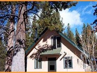 Morris Chalet under huge pine trees - Morris Chalet - South Lake Tahoe - rentals