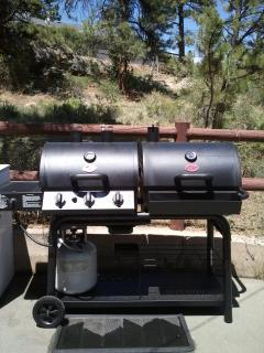 Gas grill or bring your own charcoal or do both!
