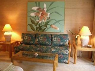 Tropical Decor in Living Area, Queen Size Sofabed
