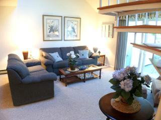 Ocean Edge Townhouse with King Bed & Pool (fees apply) - HO0451, Brewster