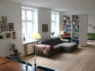 Large family friendly Copenhagen apartment at Oesterbro