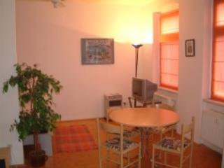 Vacation Apartment in Dresden - comfortable, central, WiFi (# 2244) #2244