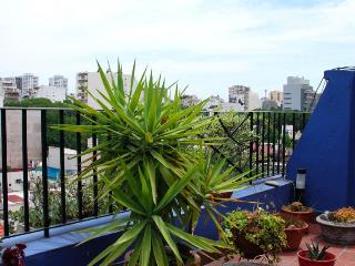 3 bedroom terrace apartment overlooking BA, Buenos Aires