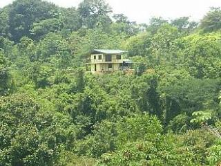Canopy Vista sits perched out in the middle of the Rainforest Preserve