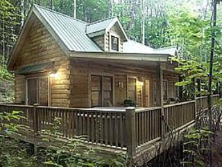 Ravens Cove Cabin - Seclusion, privacy and comfort, Bryson City